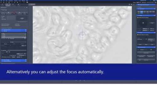 ZEISS ZEN 2.3: Introduction to Definite Focus.2