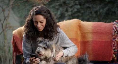 The Dog Days of Saving | App