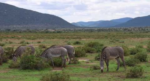 Samburu, a place like no other