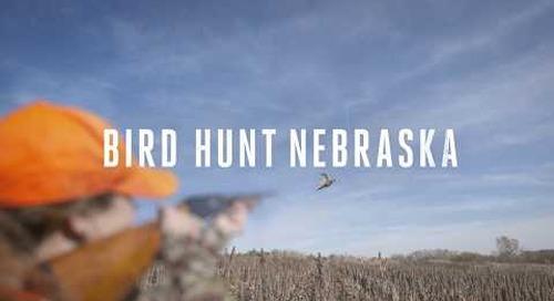 Bird Hunt Nebraska