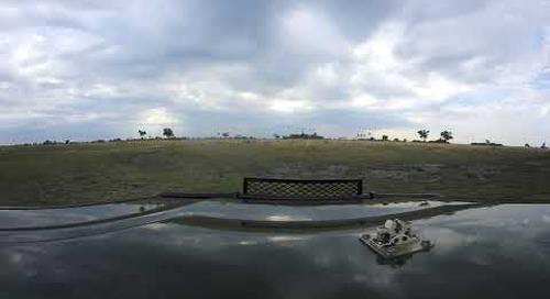 360 degree - Linyanti, highly mobile wild dog sighting