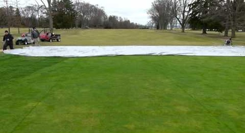 Removing Greens Cover #10