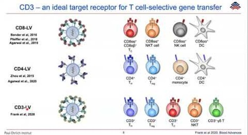 Combining T-cell-specific activation & in vivo gene delivery through CD3-targeted lentiviral vectors