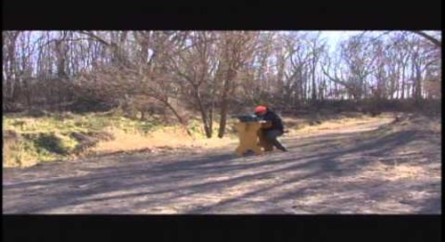 Sight In Shotgun Equipment