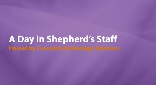 A Day in Shepherd's Staff
