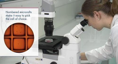 ZEISS & QIAGEN: Empowering Your Single-Cell Research with QIAscout