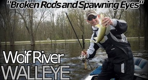 Wolf River Walleye Fishing - Spring Run