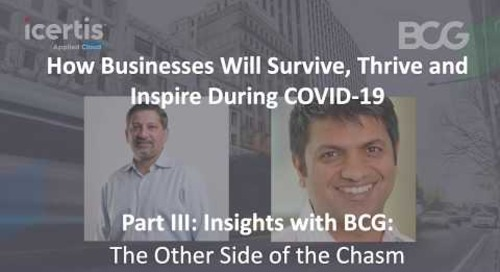 Insights with BCG: The Other Side of the Chasm