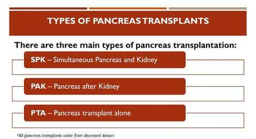 Pancreas Transplant Education (in Spanish)