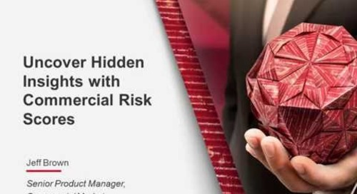 Uncover Hidden Insights with Commercial Risk Scores