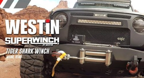 Superwinch Tiger Shark Winch