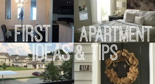 Budget Friendly Apartment Ideas    FIRST Apartment