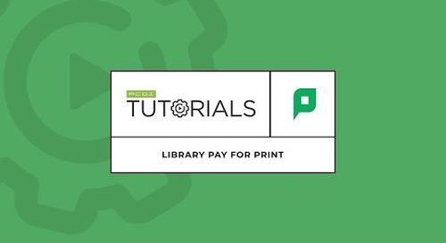 Brazilian Portuguese Pay For Print Video