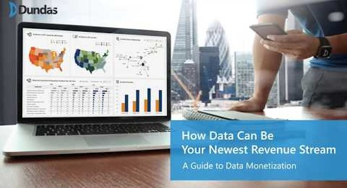 How Data Can Be Your Newest Revenue Stream - A Guide to Data Monetization