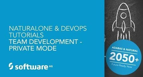 Team Development - Private Mode