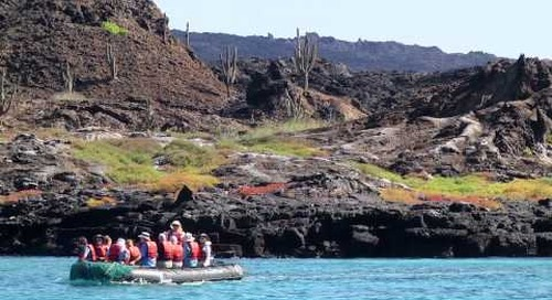 Exploring the Galapagos with International Expeditions