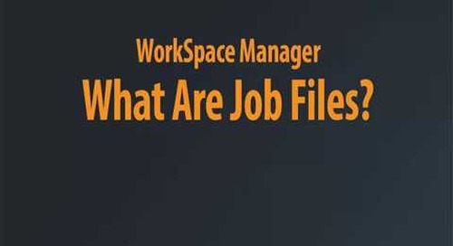 WorkSpace Manager - What are Job Files