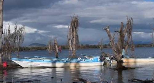 Silent Lake Naivasha