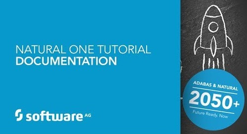 Natural ONE Tutorial - Documentation