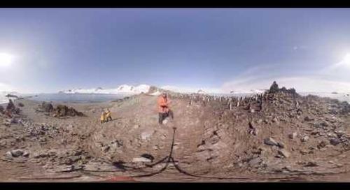 Antarctica: Ornithologist Fabrice Genevois talks chinstrap penguins (360° VR)