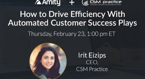 Customer Success: How to Drive Efficiency