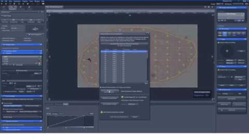 ZEISS ZEN 2.3: Perform Large Tile Experiments with Definite Focus.2