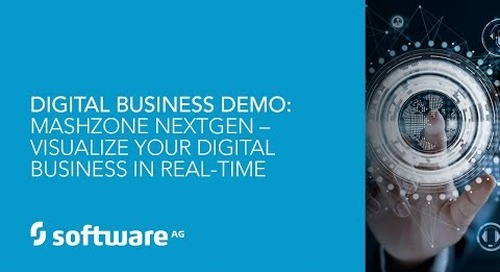 Demo: MashZone NextGen – Visualize Your Digital Business in Real Time