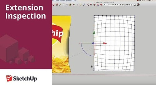 Extension Inspection: Extensions for Modeling a Bag of Chips