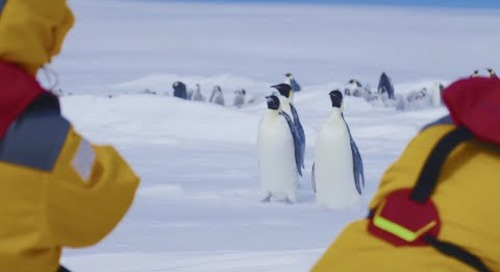 Snow Hill Island, Antarctica: The Impossible Journey