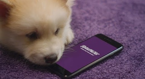 Sniff Out Great Savings at RetailMeNot