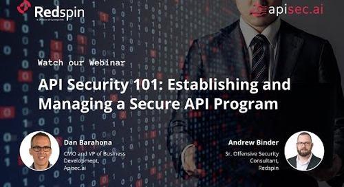 API Security 101: Establishing and Managing a Secure API Program