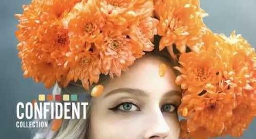 BEHR® 2017 Color Trends