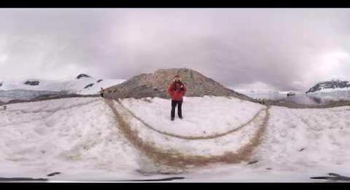 Antarctica: Penguinologist Dr. Tom Hart talks Gentoo penguins and their feeding habits (360° VR)