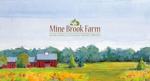 Mine Brook Farm