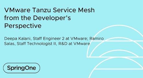 VMware Tanzu Service Mesh from the Developer's Perspective