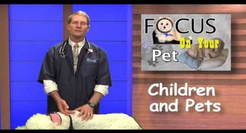 Children and Pets Ep 9