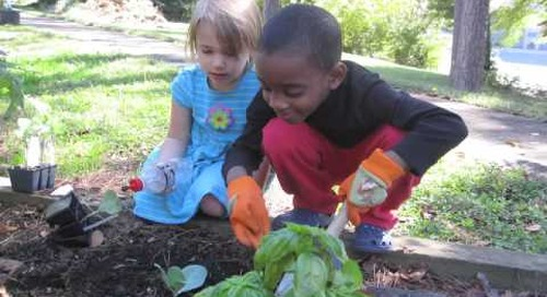 'Environmental Stewardship and Healthy Living through Outdoor Learning