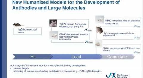 Humanized Mouse Models for Preclinical Therapeutic Antibody Development