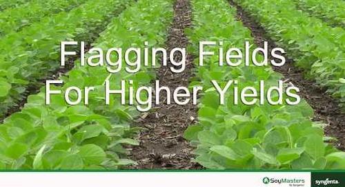 Flagging Fields for Higher Yields
