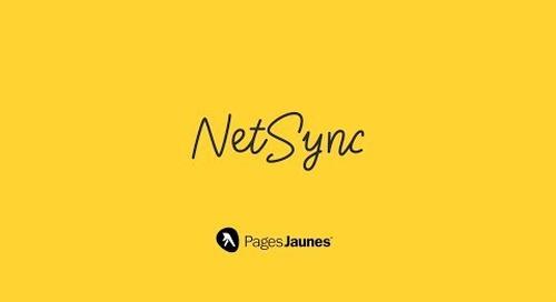 NetSync Premium: Propulsez votre présence en ligne