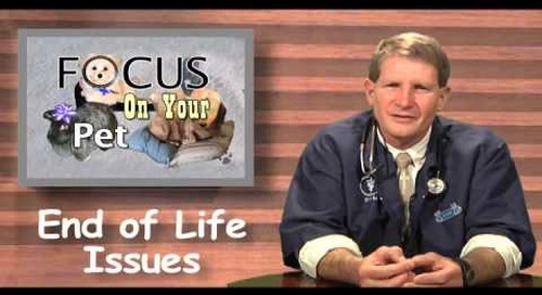 End of Life Issues Ep 010