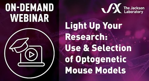 Light Up Your Research: Use and Selection of Optogenetic Mouse Models