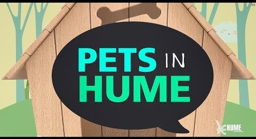 Pets in Hume - Training and exercising your dog!