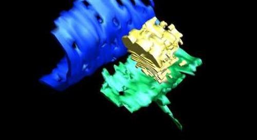 ZEISS Crossbeam: 3D reconstruction of Golgi stacks in algae