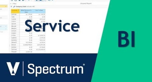 Spectrum BI Service