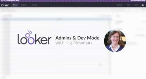 Look & Learn - Admin & Developer Mode