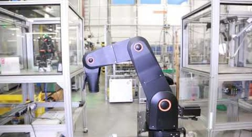 robolink® DP 4-axis or 5-axis robot arm