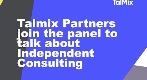 Meet the Talmix Partners and learn more about how they're helping consultants grow.