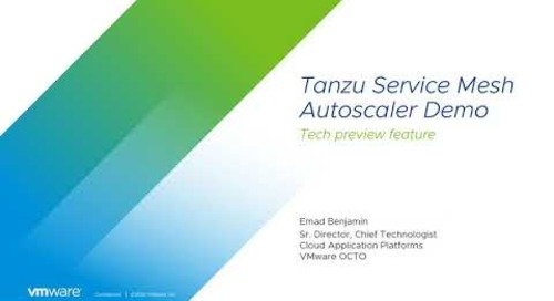 Tanzu Service Mesh Autoscaler Feature Demo