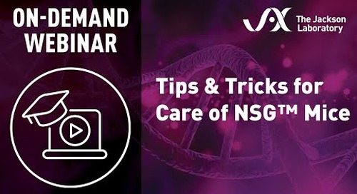 Tips & Tricks for Care of NSG Mice